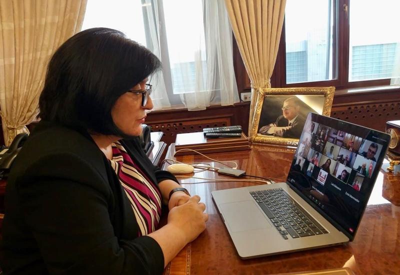 Делегация Милли Меджлиса в ПАСЕ провела заседание в формате видеоконференции