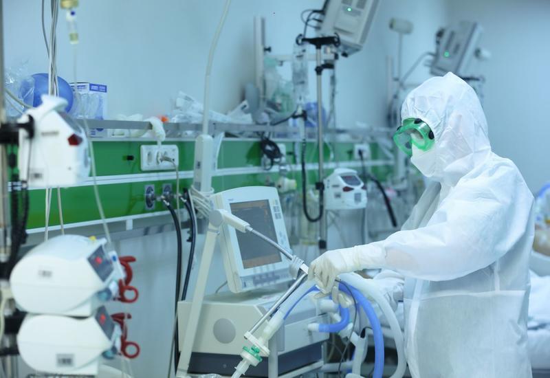 Массовое заражение коронавирусом в Шеки