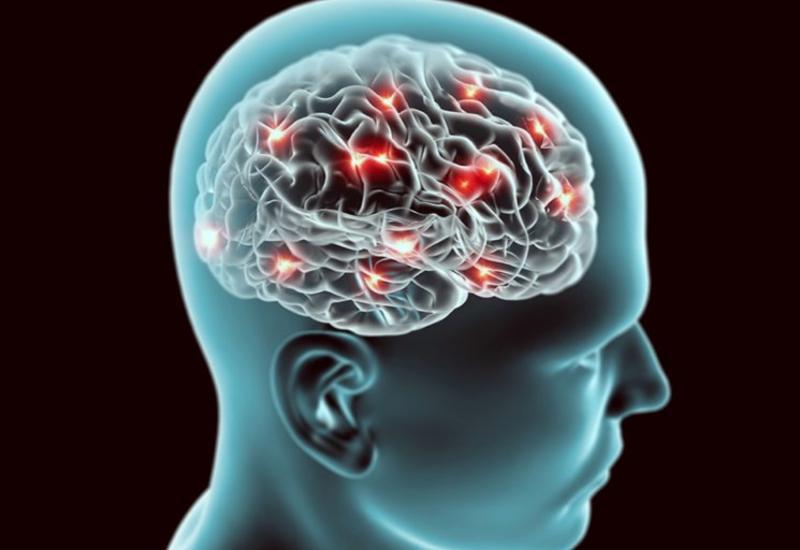 Ученые научились распознавать ответственные за адаптацию клетки головного мозга