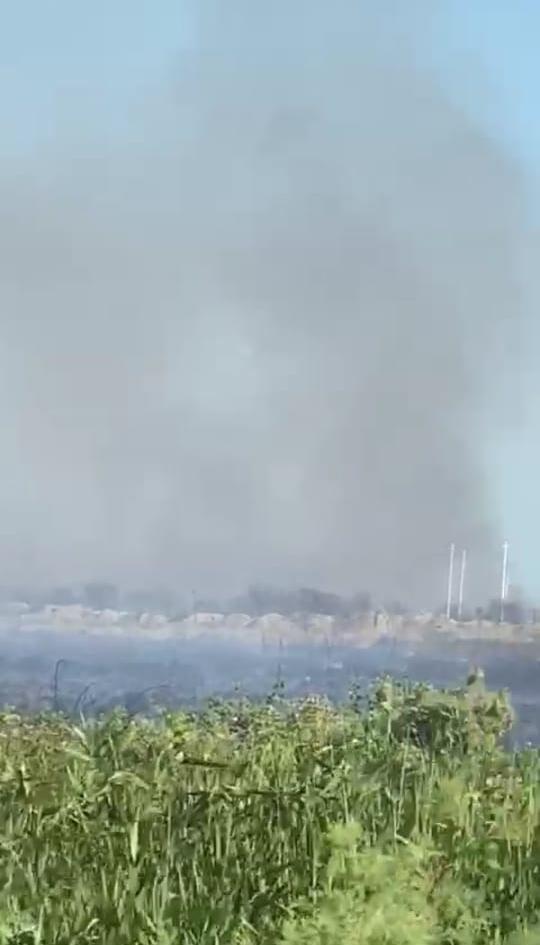 Пожар в Национальном парке Гызылагадж потушен