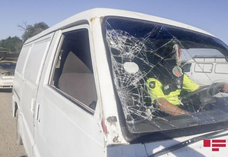 В Губе автомобиль насмерть сбил пешехода