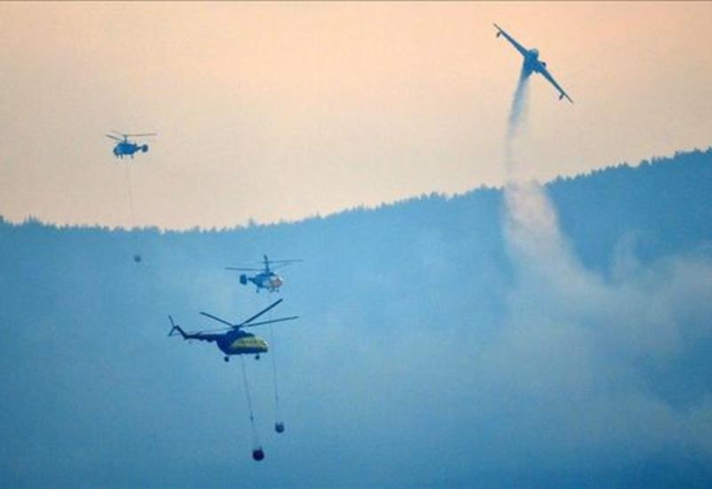 На западе Турции тушат лесные пожары