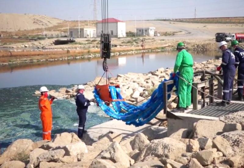 Озеро Беюк Шор очищено от сточных вод на 50%