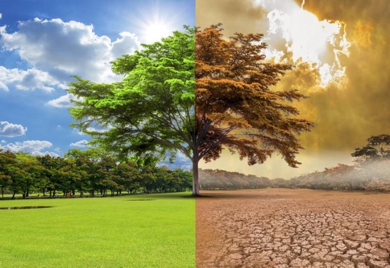 Предсказано изменение климата в ближайшие пять лет