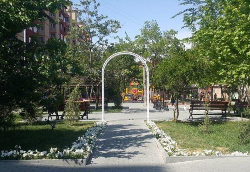 В Низаминском районе Баку снесён незаконно построенный объект