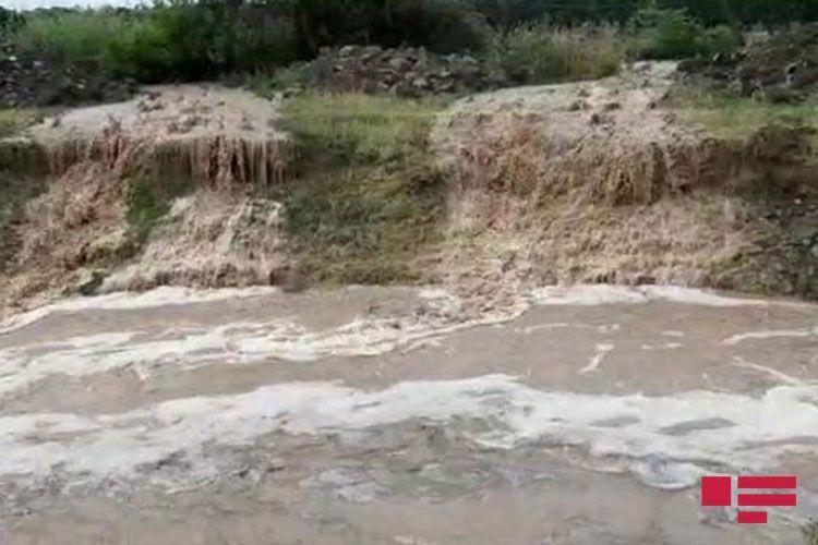 В Гяндже из-за ливня затопило водой жилые дома