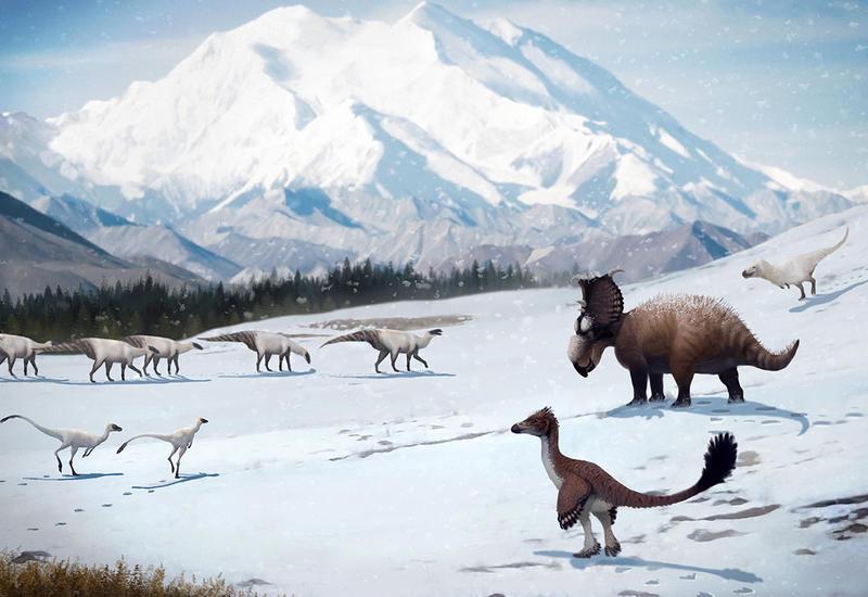 Динозавры плодились на территории нынешней Аляски