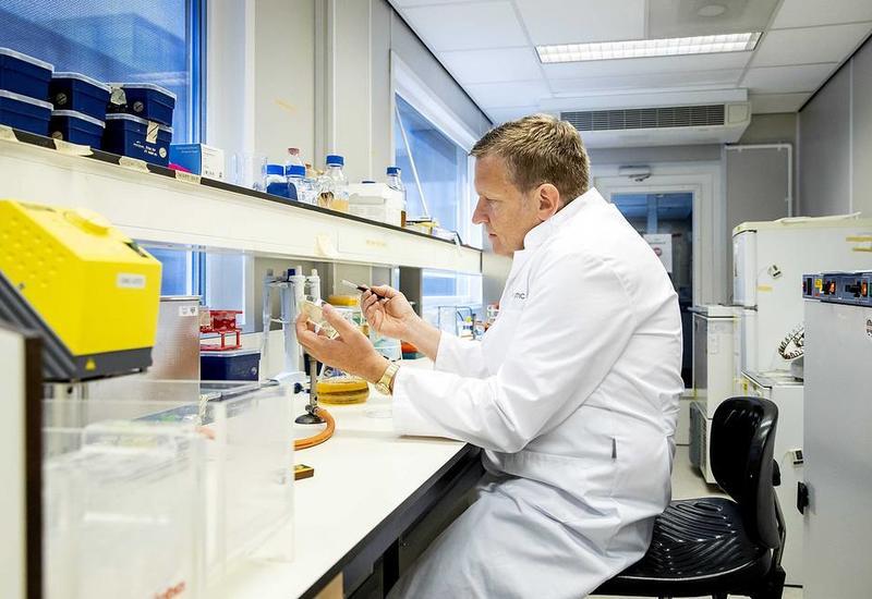 В крови людей с тяжелой формой COVID-19 нашли опасное антитело