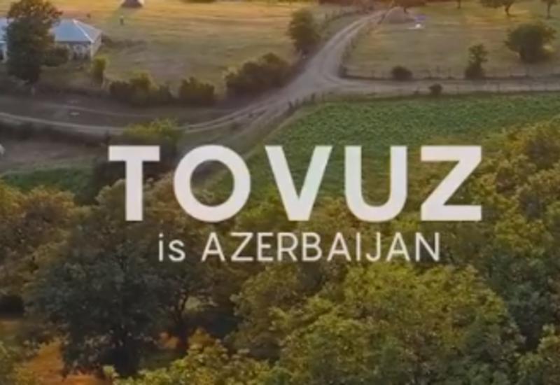 Известный фотограф поделился патриотичным роликом про Товуз