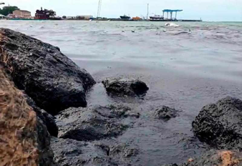 Объяснен феномен черной воды у берегов Черного моря