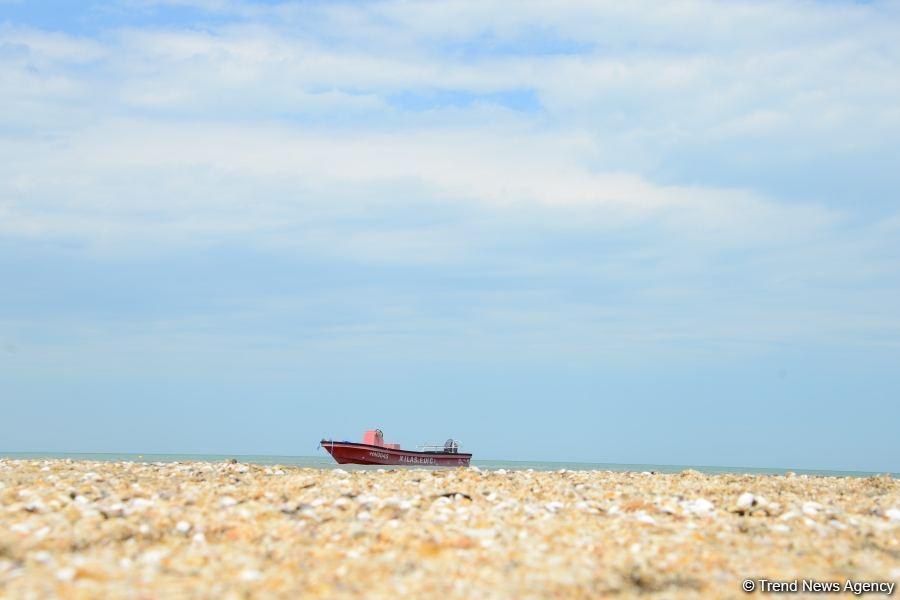 После смягчения карантина население устремилось на пляжи