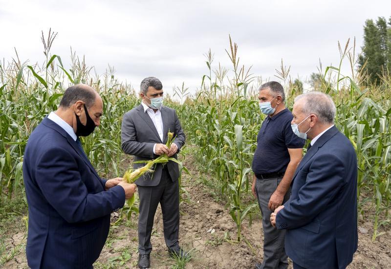В Азербайджане поставлены конкретные задачи по эффективному использованию водных ресурсов
