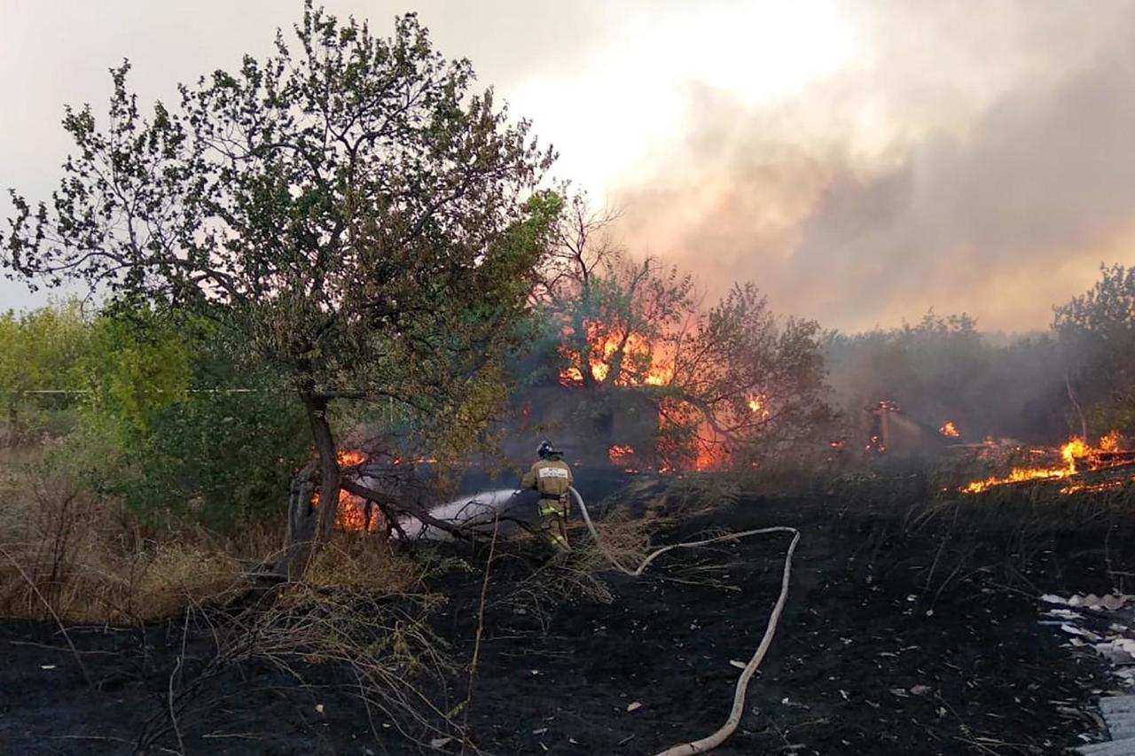 опять волк фото лесного пожара в россии гараже