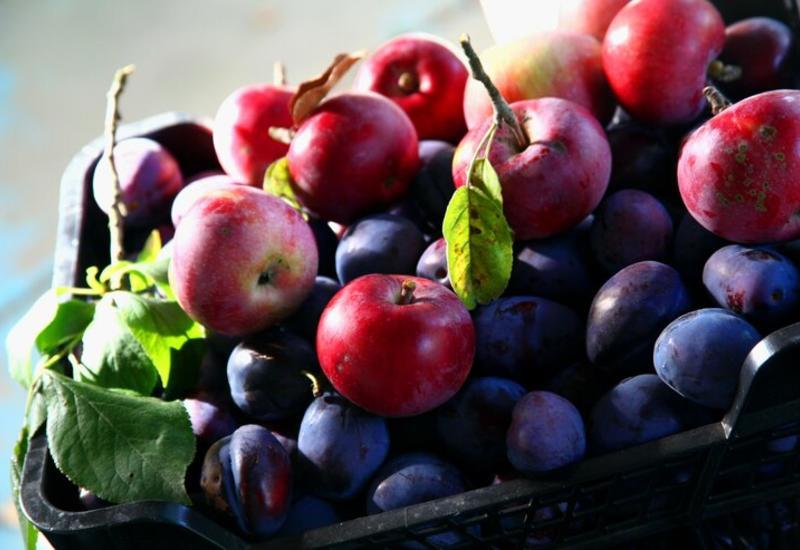 7 самых полезных фруктов, которые нужно срочно добавить в свой рацион