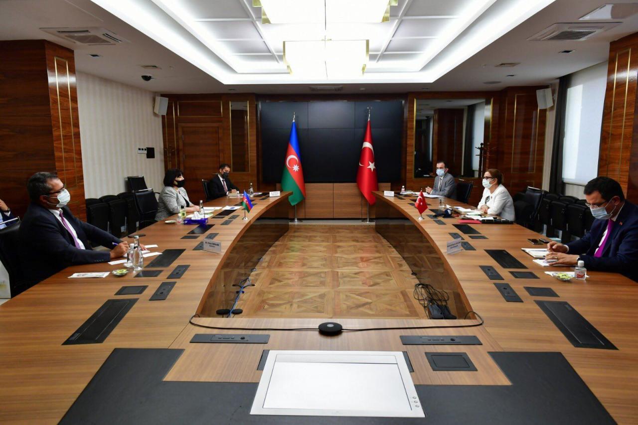 Спикер парламента Азербайджана встретилась с министром торговли Турции