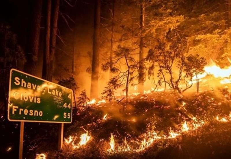В США возросло количество жертв пожаров