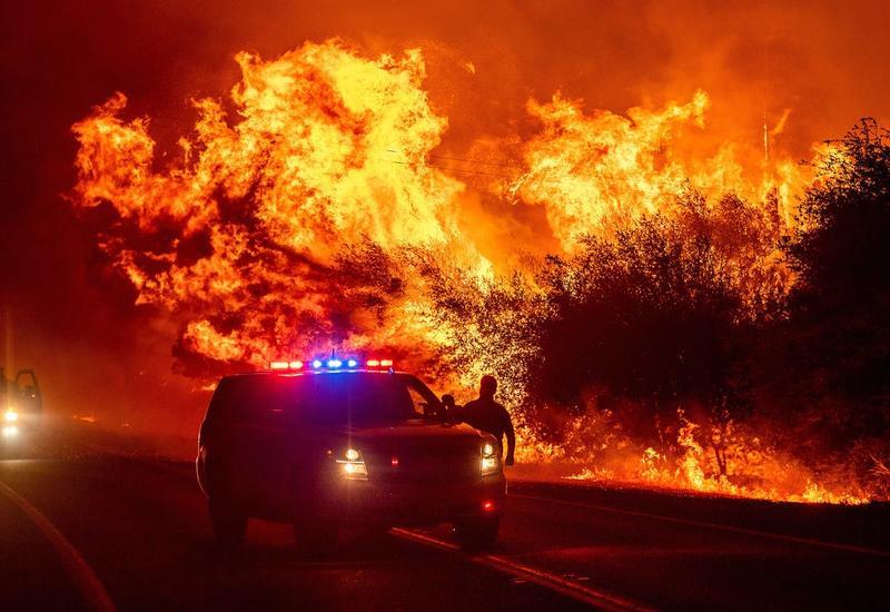 Пожары на западном побережье США уничтожили более миллиона гектаров леса