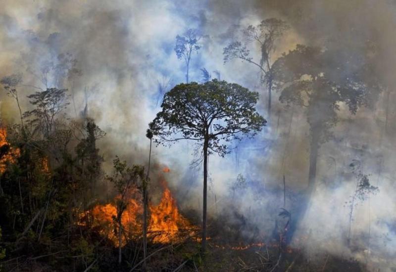 Чрезвычайная ситуация в Бразилии из-за пожаров