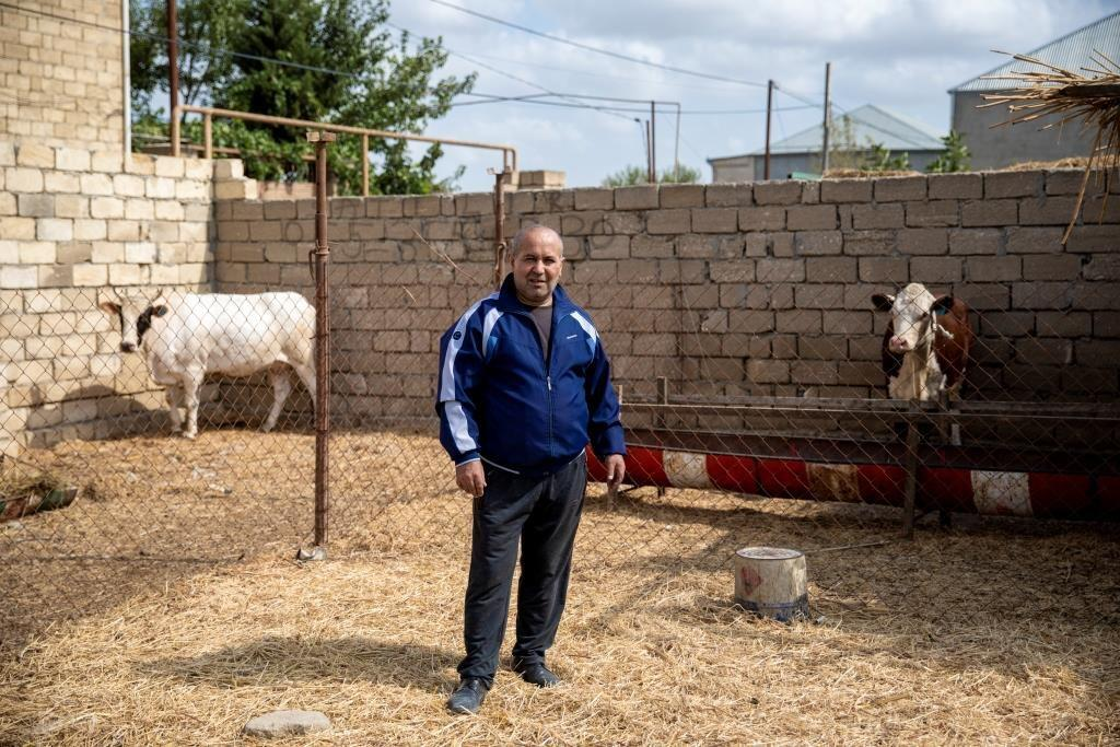 В Азербайджане для малообеспеченных семей создаются небольшие хозяйства