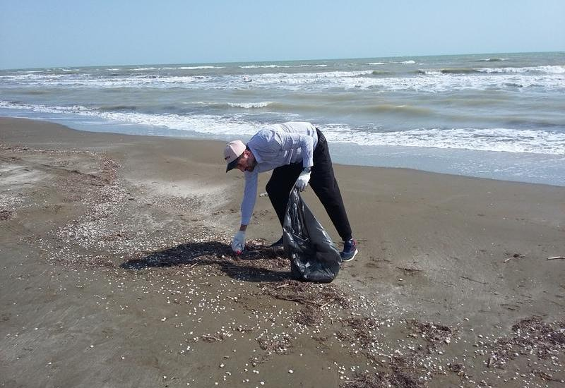 В прибрежной зоне Сумгайыта прошла экологическая акция