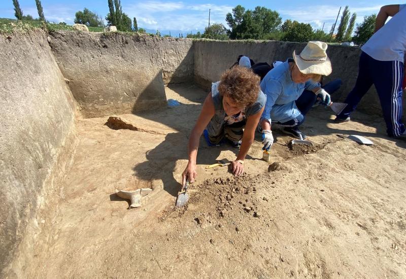 В Шеки нашли новый античный памятник
