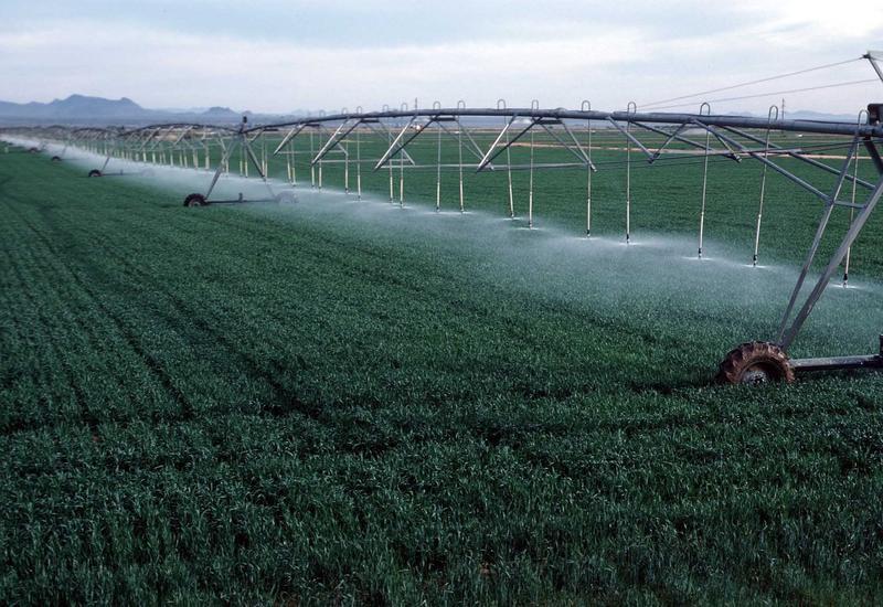 Новое водохранилище поможет решить проблему орошения земель в Габале