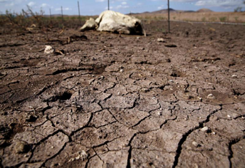 Предсказана глобальная катастрофическая засуха