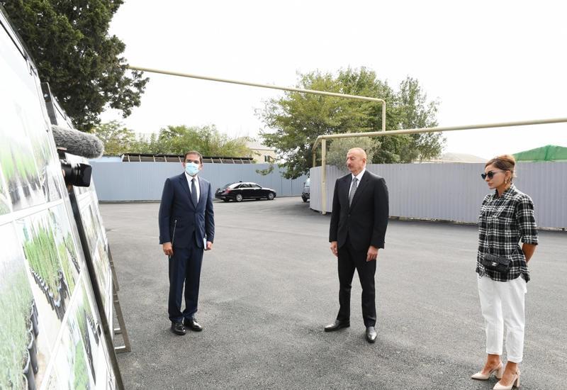 Президент Ильхам Алиев: Начинается новый период в жизни села Балаханы