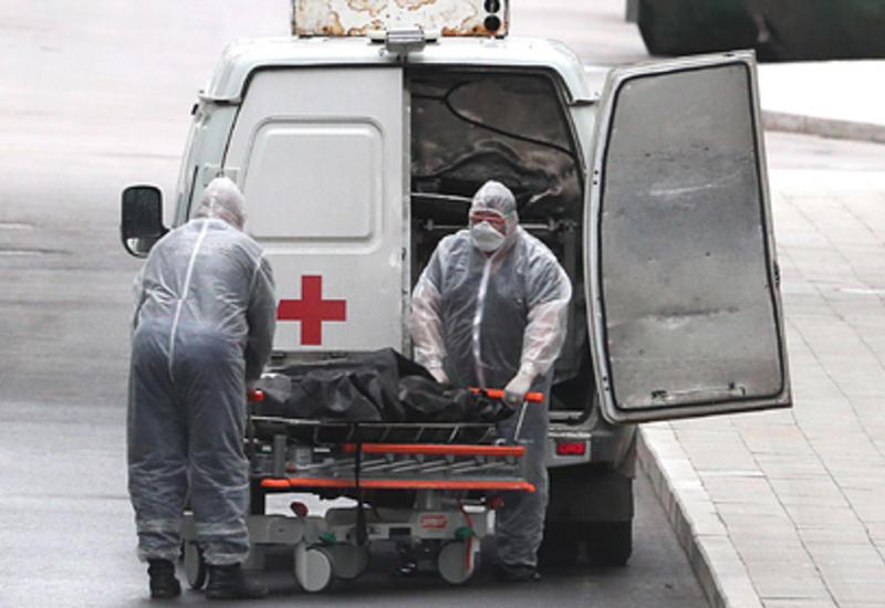 Определена настоящая смертность от коронавирусной пандемии
