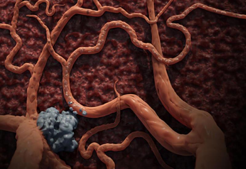 Названы новые разносчики коронавируса