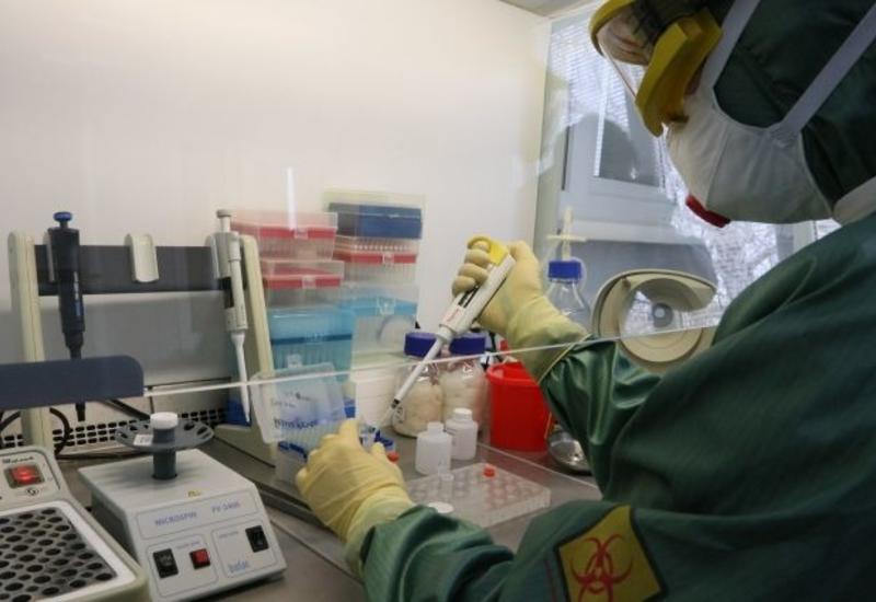 Эпидемиолог оценил шансы на полное исчезновение коронавируса