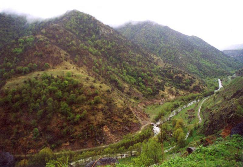 Армянские оккупанты нещадно эксплуатировали богатства Кельбаджара