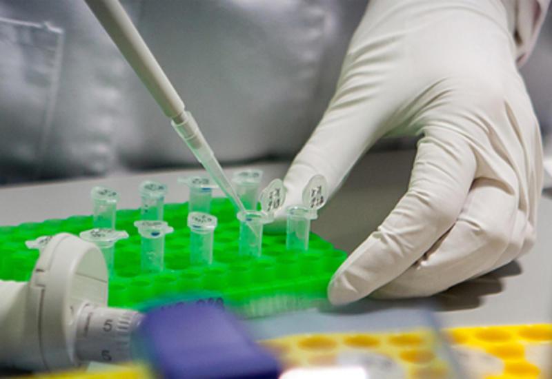 ВОЗ назвала сроки начала вакцинации от коронавируса в экстренных случаях