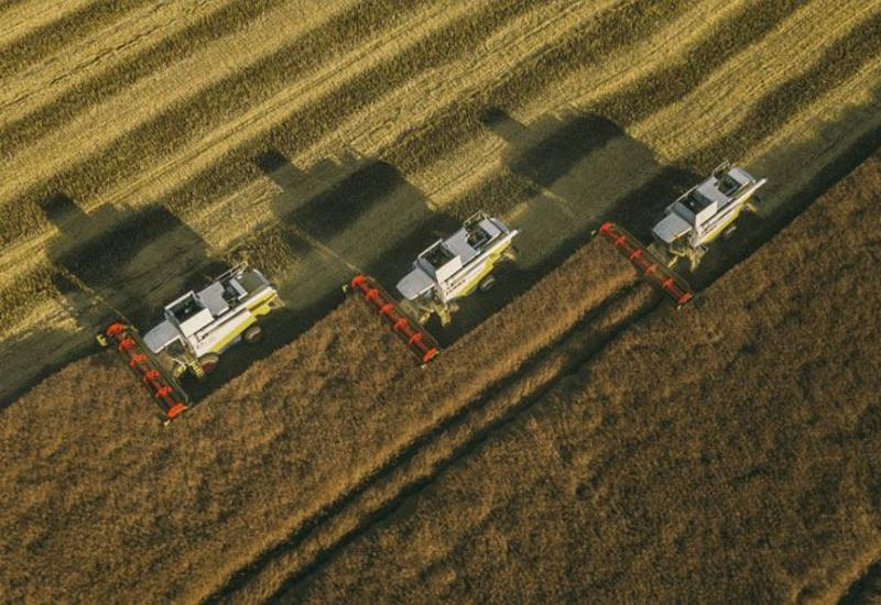 FAO Azərbaycanın azad edilmiş ərazilərində kənd təsərrüfatının inkişafı üzrə işlərə başlayacaq