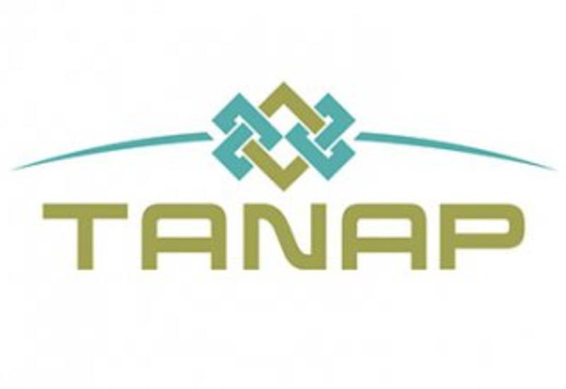 Стало известно, когда TANAP достигнет предельной пропускной мощности