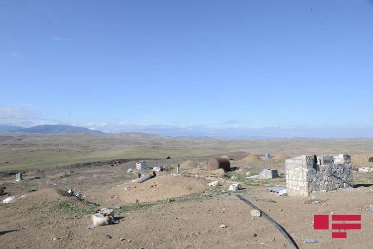 Армяне разрушили и засеяли пшеницей кладбище в селе Кюрдлер Физулинского района
