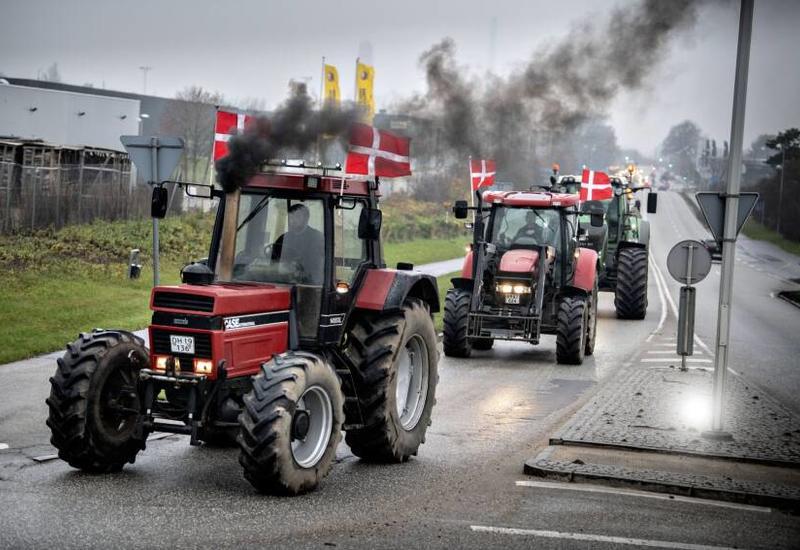 Фермеры на тракторах устроили протест в Копенгагене против уничтожения норок