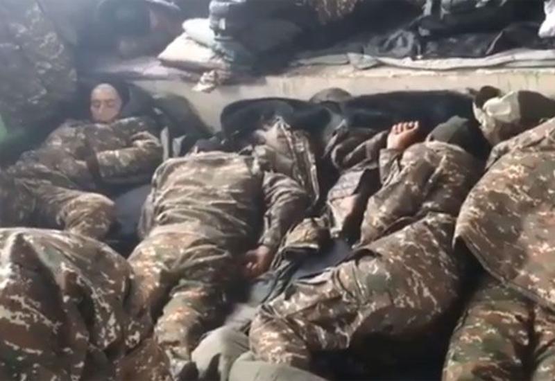 Спят на холодном полу и голодают