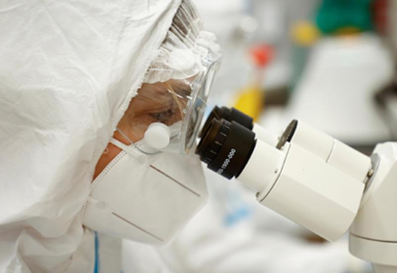 Найдено блокирующее проникновение коронавируса в организм вещество