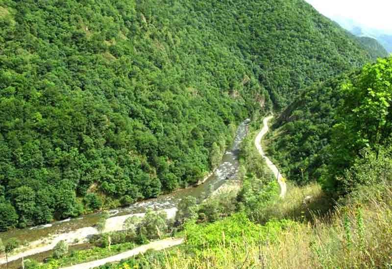 Будет оценен ущерб, нанесенный биоразнообразию Лачинского района