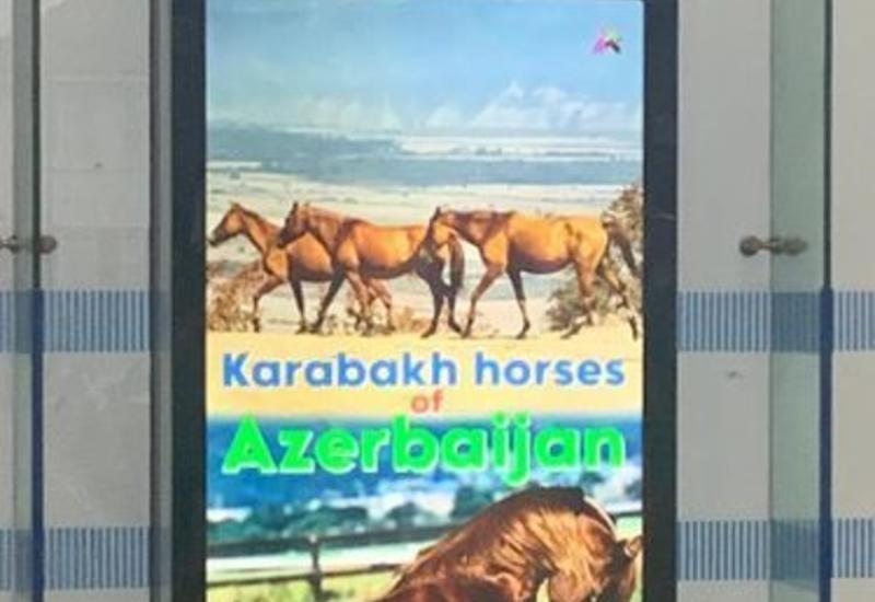 В лондонском метро реализован проект, посвященный азербайджанской культуре