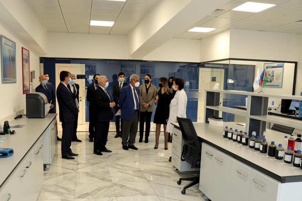 Университет АДА и «Азерэнержи» расширяют сотрудничество