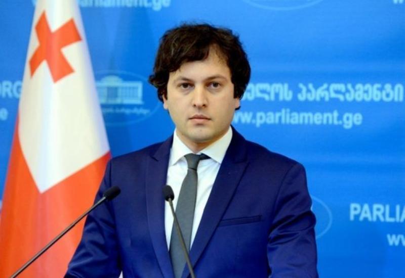 Избран новый председатель правящей партии Грузии