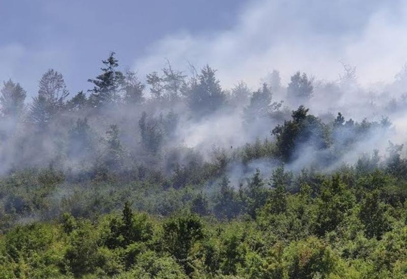 Пожар в Гирканском национальном парке продолжается,