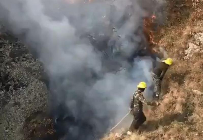 Продолжается тушение пожара в Гирканском национальном парке