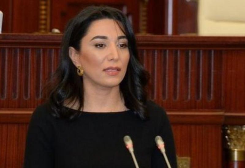 Омбудсмен направила в международные организации отчет с доказательствами пыток над азербайджанцами