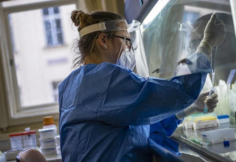 """""""Британский"""" штамм коронавируса выявили еще в 10 странах"""