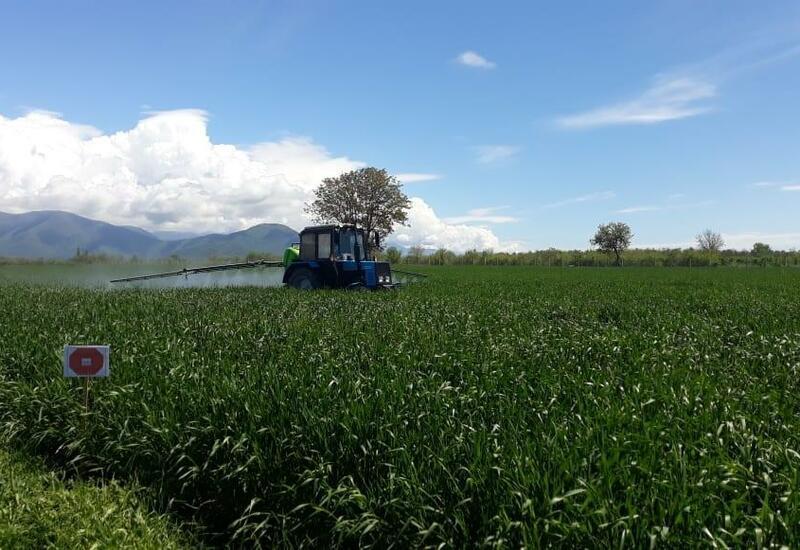 Работники сельского хозяйства смогут получить часть зарплаты в натуральной форме
