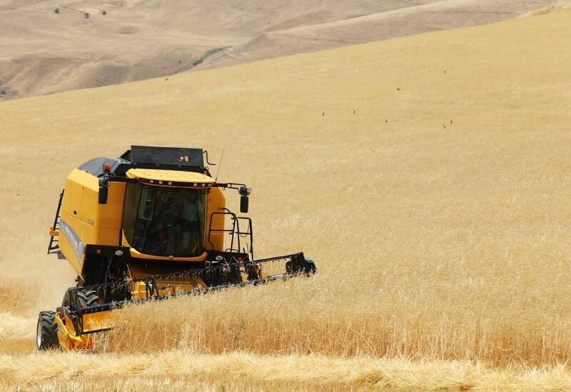В Азербайджане продлен срок освобождения от НДС импорта зерна