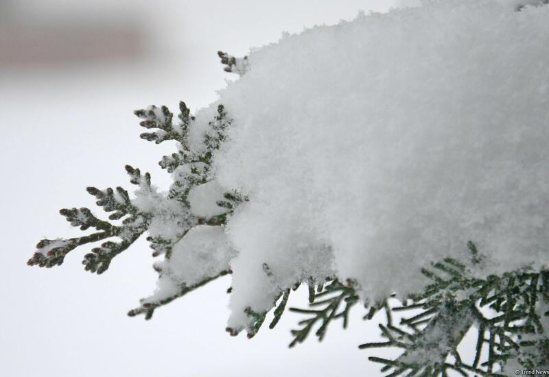 В этих регионах продолжает идти снег